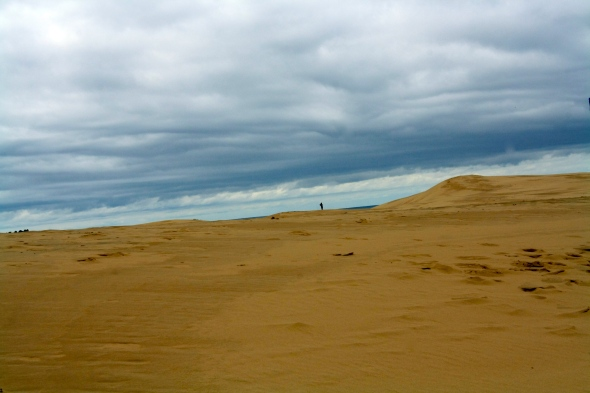 Sand dunes along the western shore of Lake Michigan.That black bit in the distance is my boyfriend.